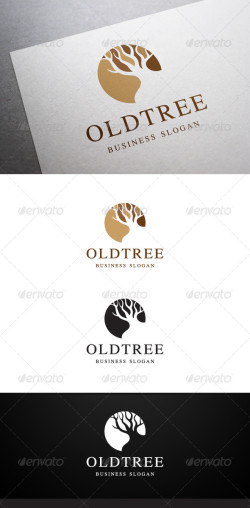 oldtree_preview